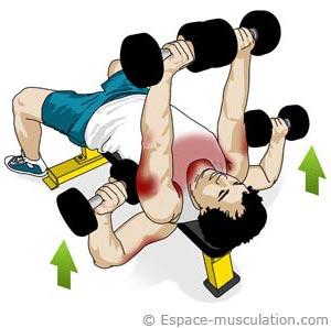 Entranement: 4 exercices pour remodeler votre poitrine