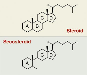 secosteroide